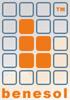 Verslag nieuwjaarsevenement van Belgian Network Solutions (Benesol)
