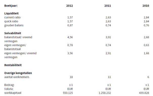ratios i3d bv 2013