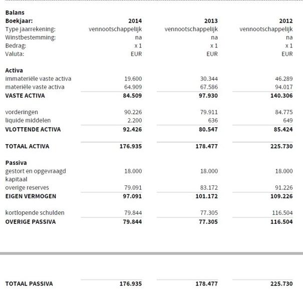 Businesshosting Balans 2014