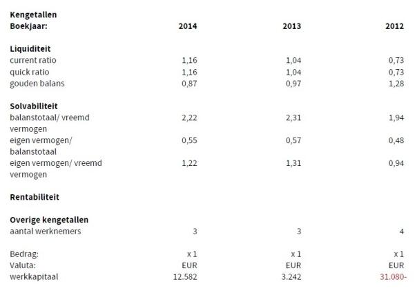 Businesshosting Ratios 2014