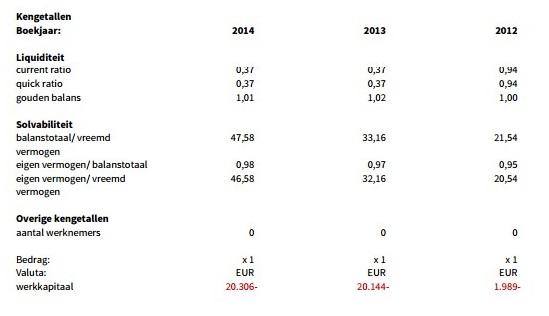 SmartDC Holding Ratios 2014